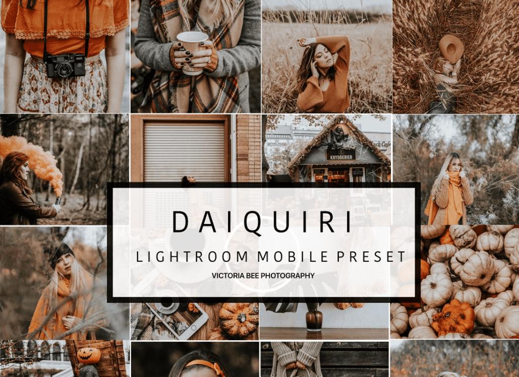 60+ Best Lightroom Mobile Presets 2021 & 30 Shortcodes To Manage Images - preset 25