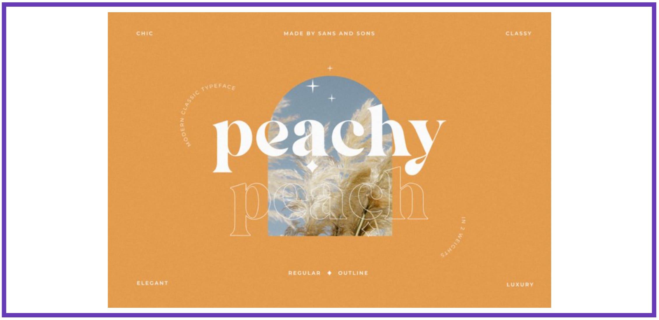 Peach - Modern Chic Serif. Best Beachy Fonts.