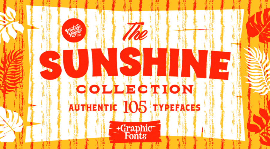 65+ Best Summer & Beach Fonts 2021: Free and Premium Fonts to Make Your Projects Exciting - best beachy font 19