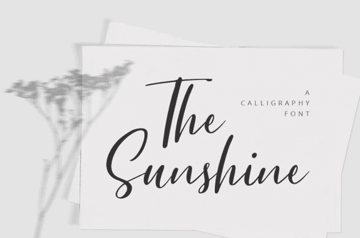65+ Best Summer & Beach Fonts 2021: Free and Premium Fonts to Make Your Projects Exciting - best beachy font 30