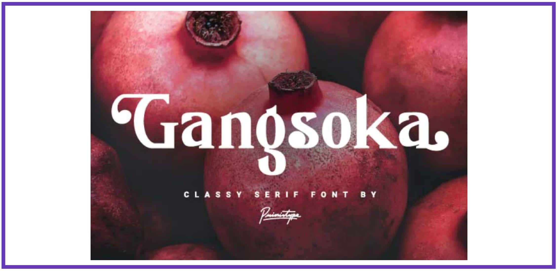 Gangsoka - Classy serif font. Best Industrial Fonts.