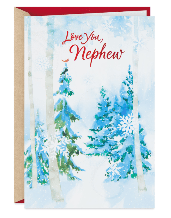 What To Write In A Card. 60+ Best Christmas And Other Occasions Greeting Card - christmas greeting card 21