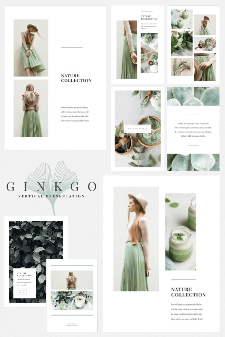 60+ Outstanding Simple PowerPoint Templates 2021: Free & Premium - 04 Ginkgo Vertical PowerPoint By Studio Sumac in Templates