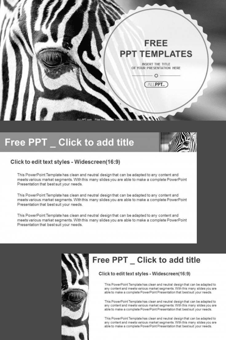 60+ Outstanding Simple PowerPoint Templates 2021: Free & Premium - 09 Monochromatic image of a the face of a zebra close up PowerPoint Templates