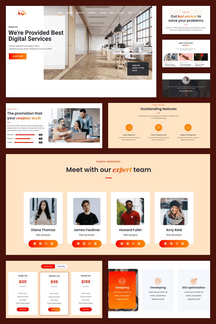 Wordpress Theme Pandu. Collage.
