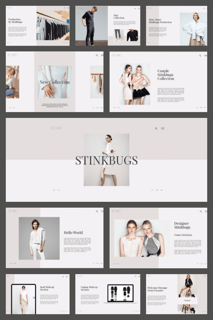 Stinkbugs PowerPoint Template. Collage Image.