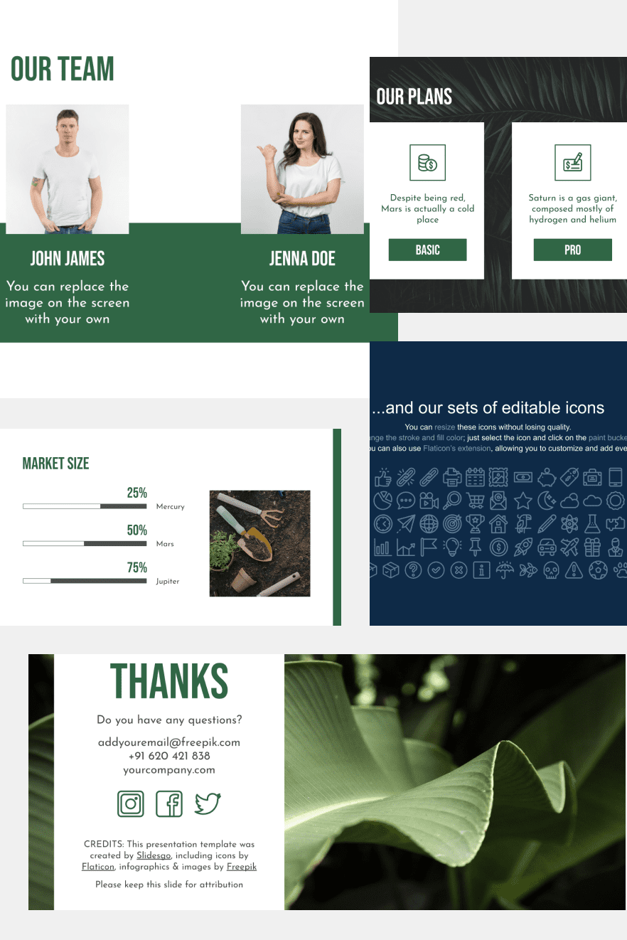Biomass Company Pitch Deck. Collage Image.