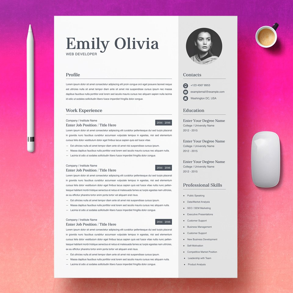 A general view of the template. Web Developer Resume Sample.