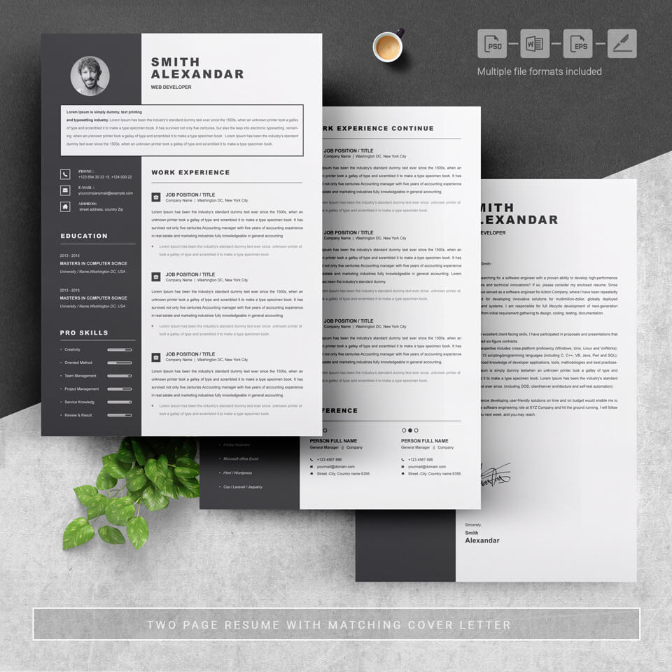 A general view of the template. Modern Resume Template.
