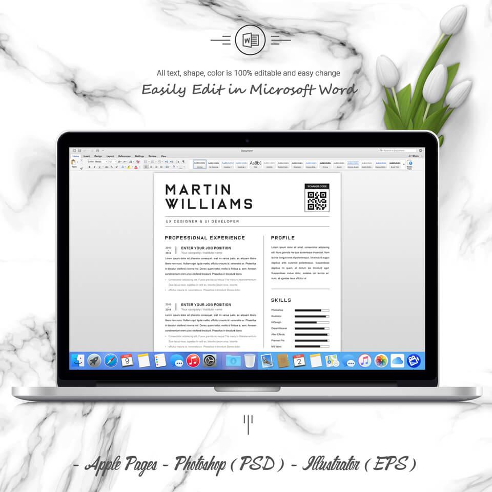 Desktop option of resume. CV Design.