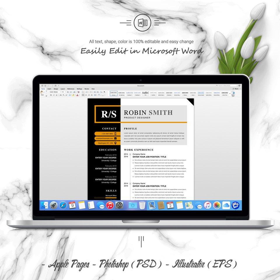 Desktop option of resume template. Product Designer Resume.