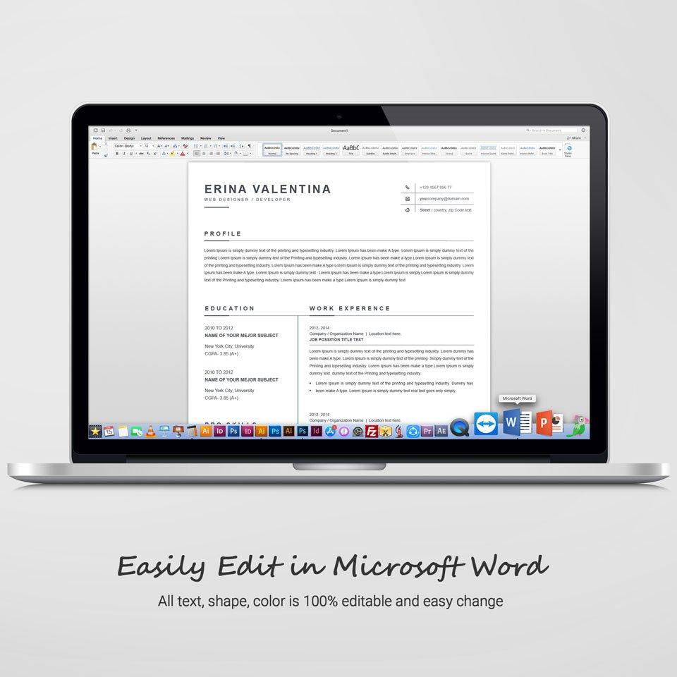 Desktop option of this template. CV Template.