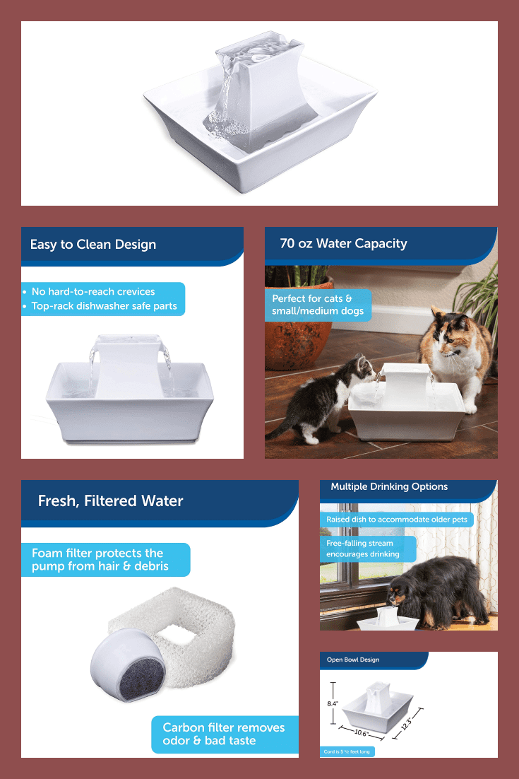 A useful gift. This is a functional white drinking fountain that will supply water to your pet independently.