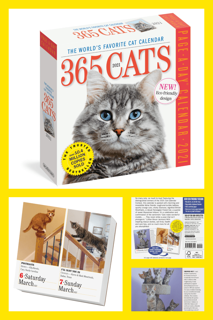 TA calendar is a classic and versatile gift. Lovers of cats will be able to admire different pictures with their pets every day.
