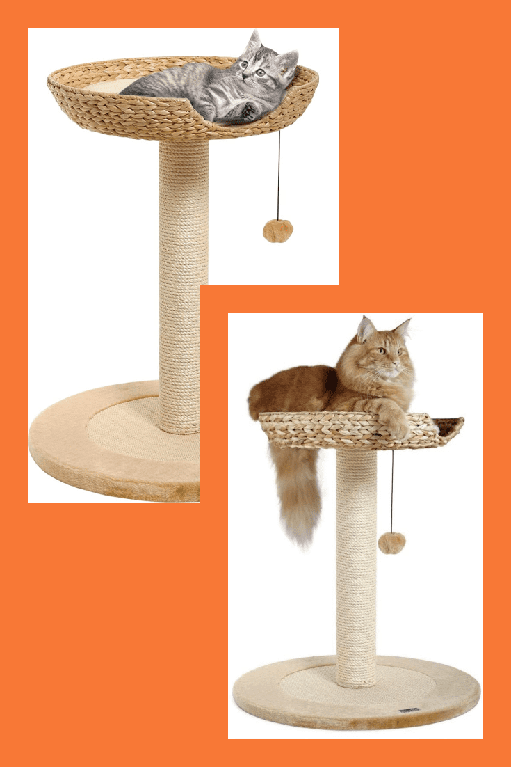 This is a super appropriate and comfortable gift for cats. Lounger, toy and scratching post in one. This is a good opportunity to save space in the apartment.