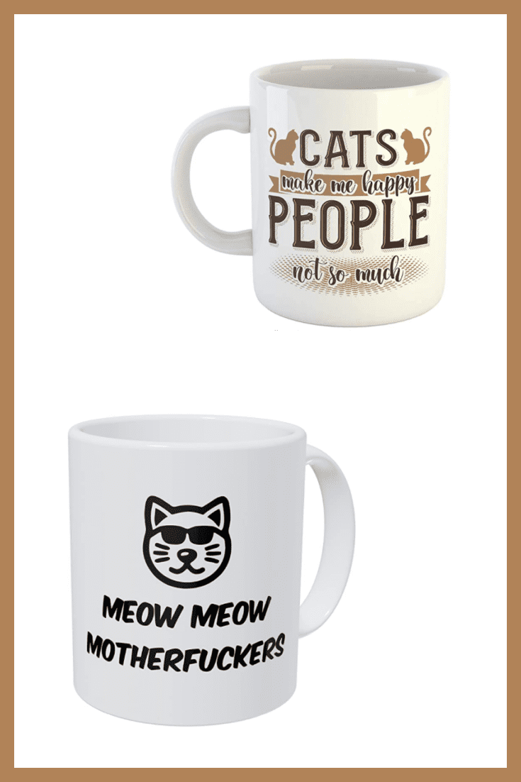 A funny and necessary gift for any person. Let a symbolic cup with a humorous inscription appear in the collection of cat lovers.