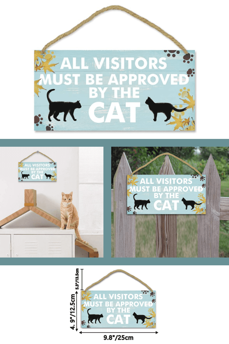 Cats are finicky animals and need to make an effort to enjoy them. Such a sign is a good alternative to