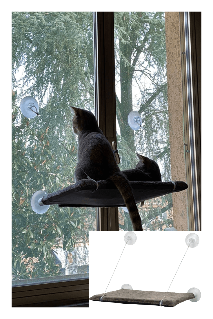 A soft gray seat, which is attached to the window with suction cups, so that your pet can watch what is happening on the street.