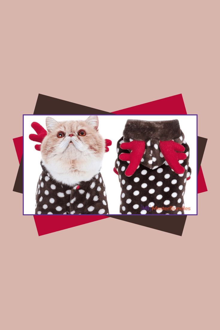 Cute Santa costume with polka dots with wings for your pet. You can even arrange a thematic photo session with him.
