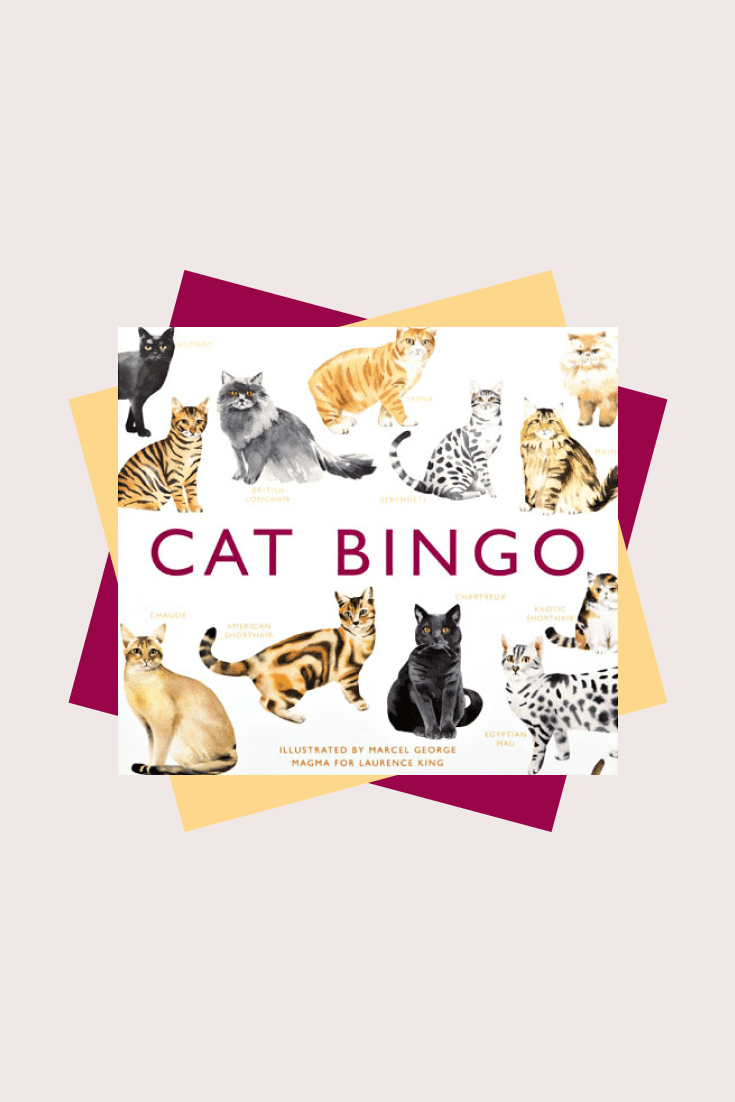 This is an entertaining and educational game that will tell you about cat breeds all over the world.