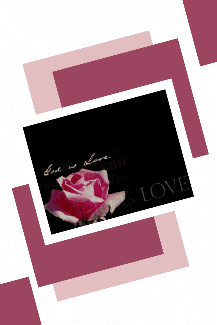 Very delicate presentation in pink with a rose.