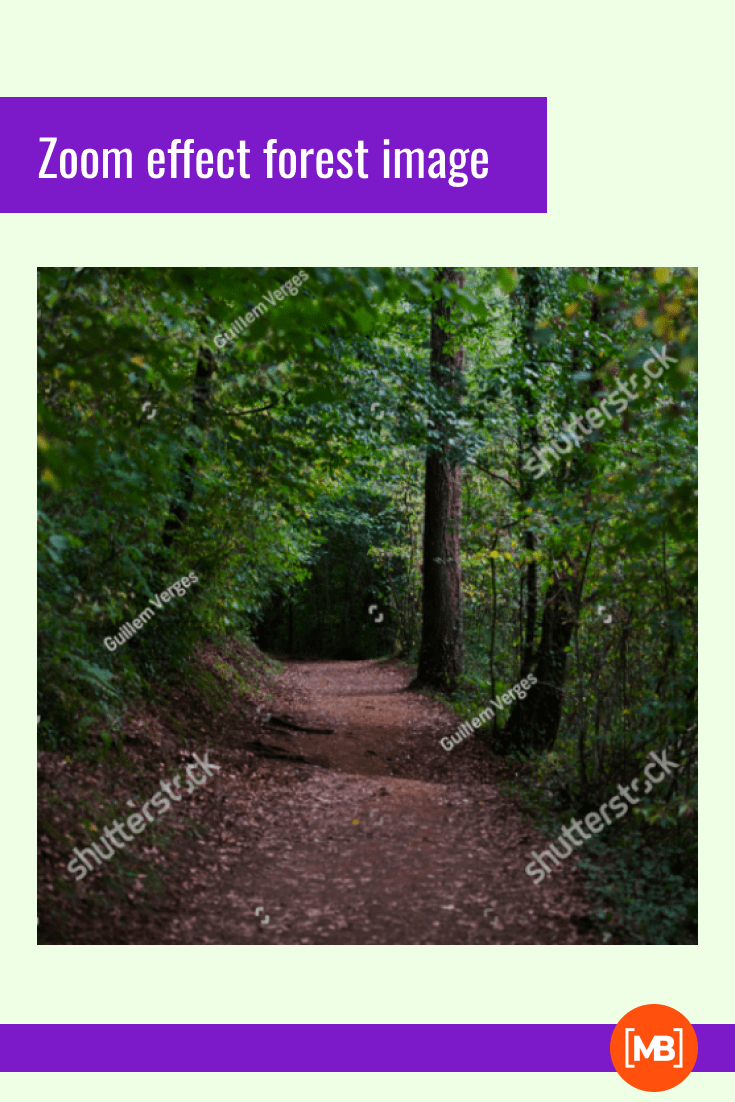 Make your online conference experience as cozy and fresh as possible. This background is made like a forest tunnel.