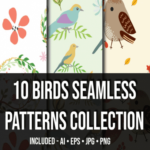 Birds Seamless Patterns Collection_main