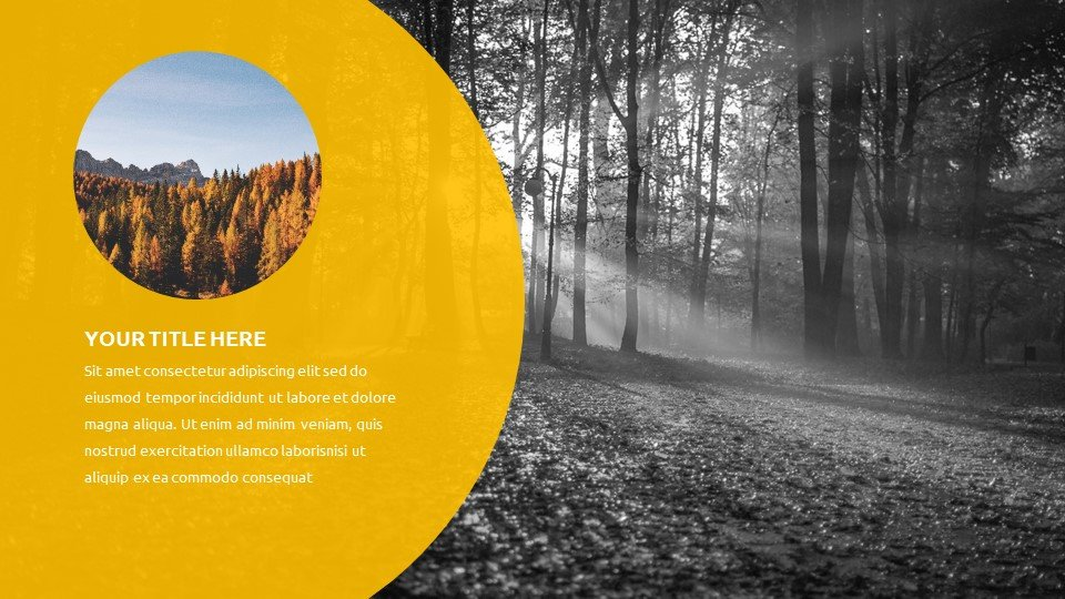 The template will fit any theme. Design flexibility will allow you to display any topic in the best possible light.Autumn - Free Fall Powerpoint Background Worship.