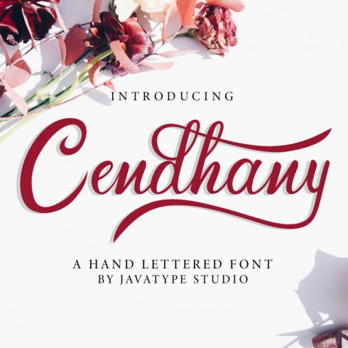 Hand Lettered Font Cendhany Example.