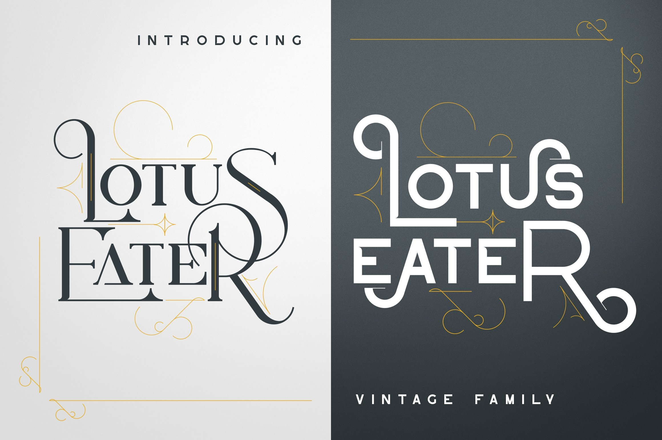 Two parts of lofe - dark and white with beautiful phrase. Vintage Font Family.