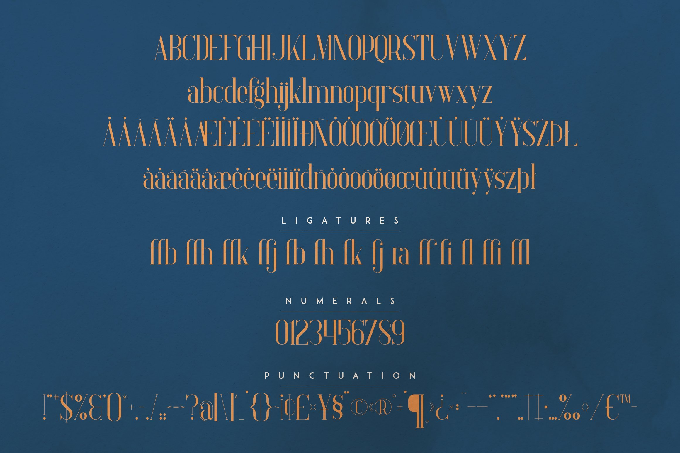 General overview of the font. Elysian - Serif Font.