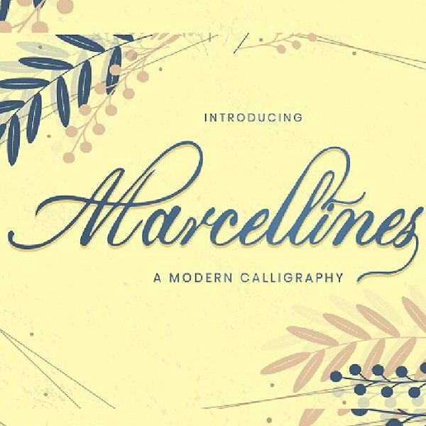 Modern Calligraphy Font Cover Image.