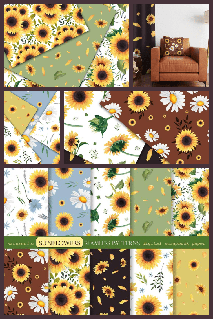 Sunflowers on different color backgrounds.