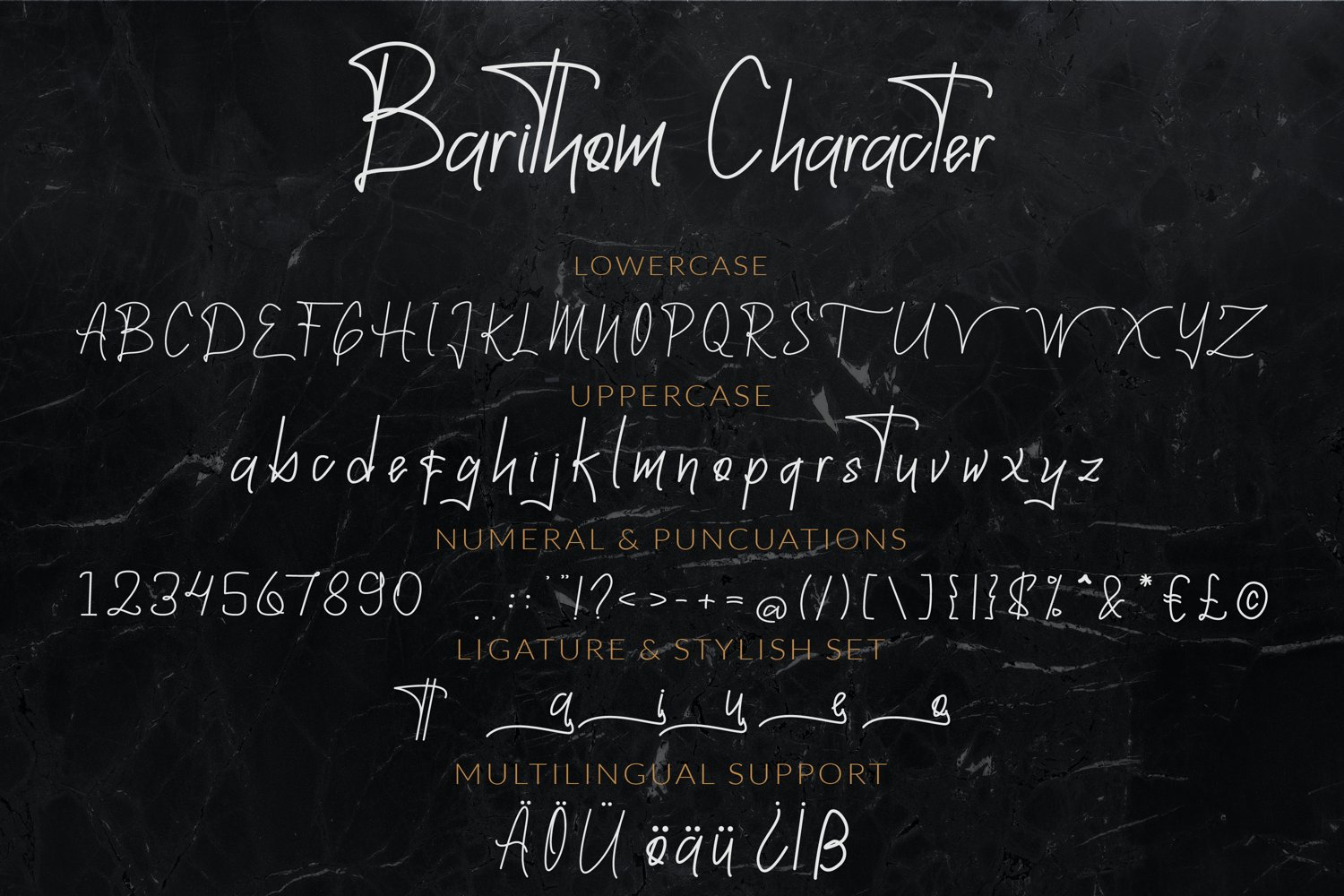 A general view of font in different variants. Barithom A Signature Monoline.