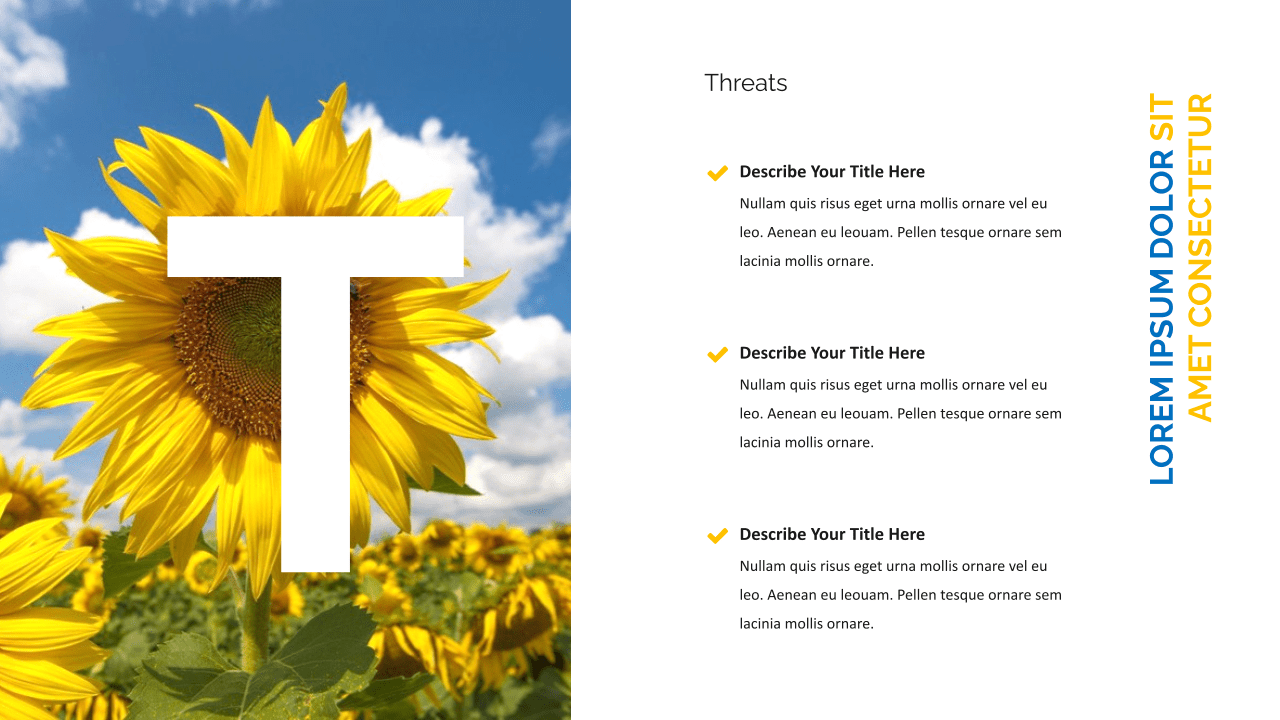 Sunflower slide for possible dangers.