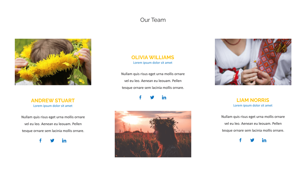 In this slide, you can describe in detail the team of your project.