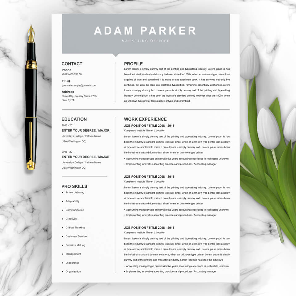 A general view of the template. Marketing Officer Resume Template.
