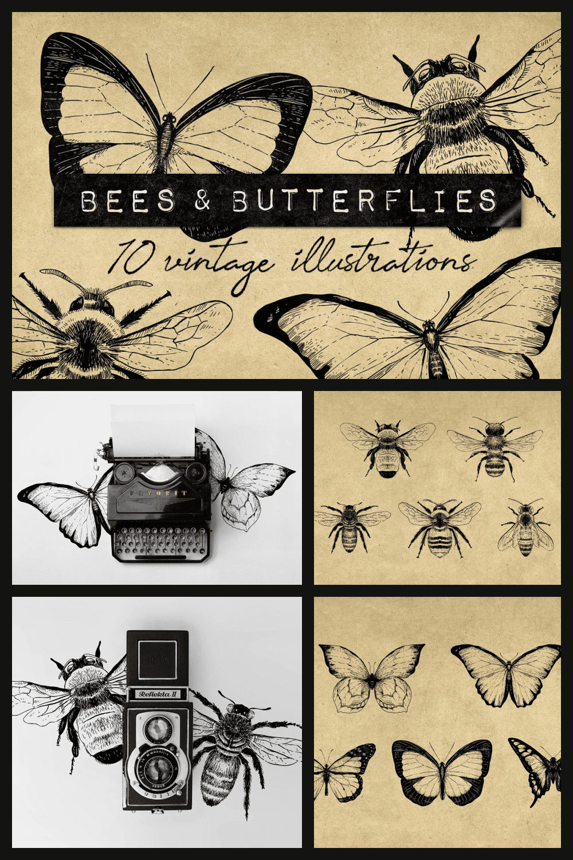 Butterflies in vintage style.