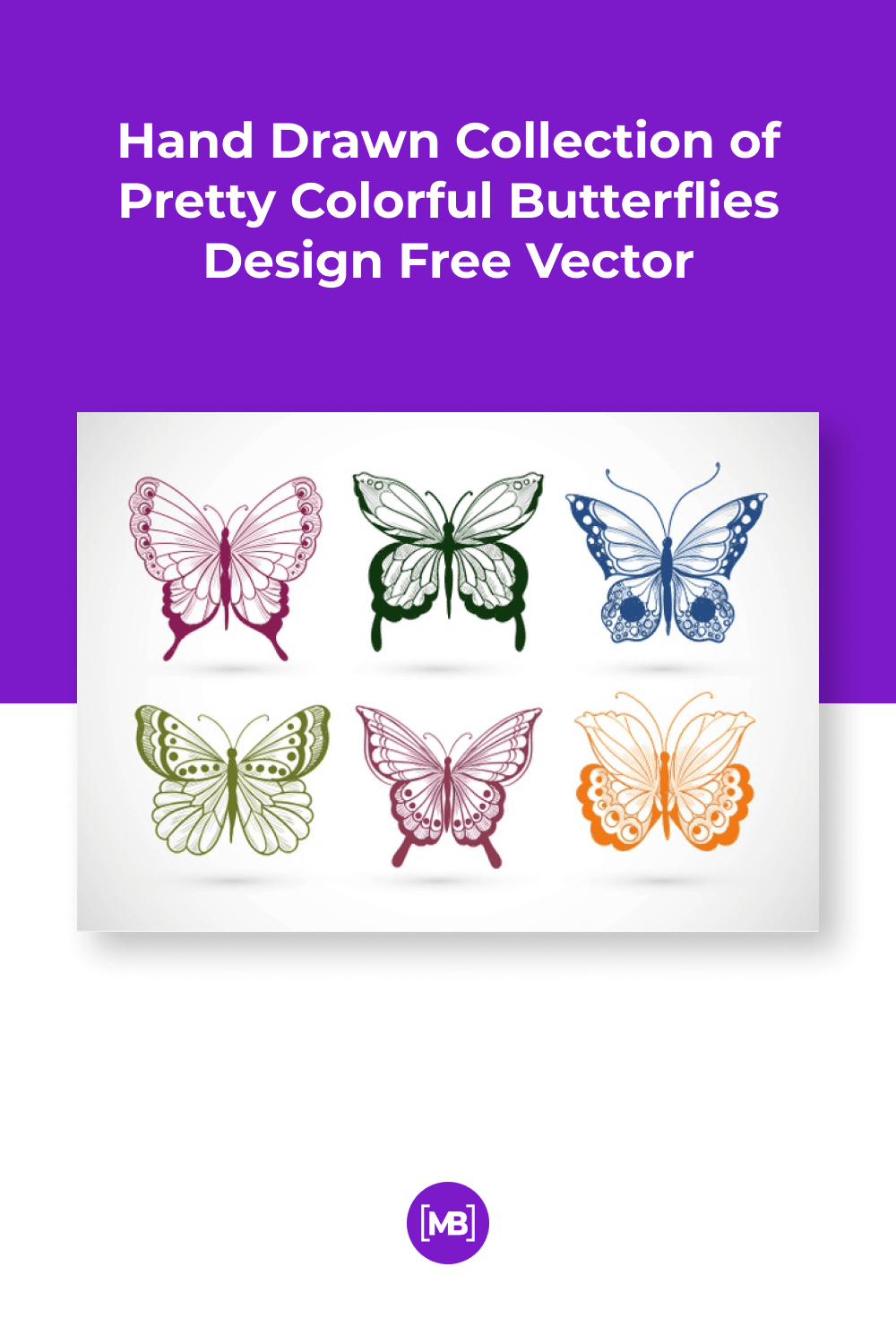 Delicate collection of butterflies in different colors and ornaments.