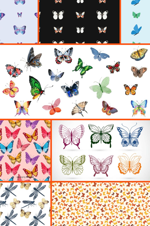 Butterfly Patterns Pinterest.