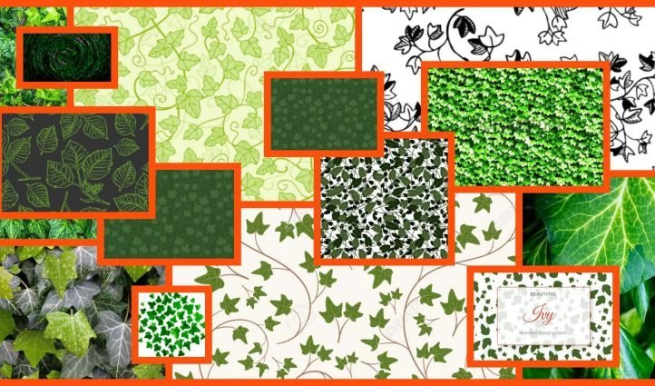 Ivy Patterns Example.