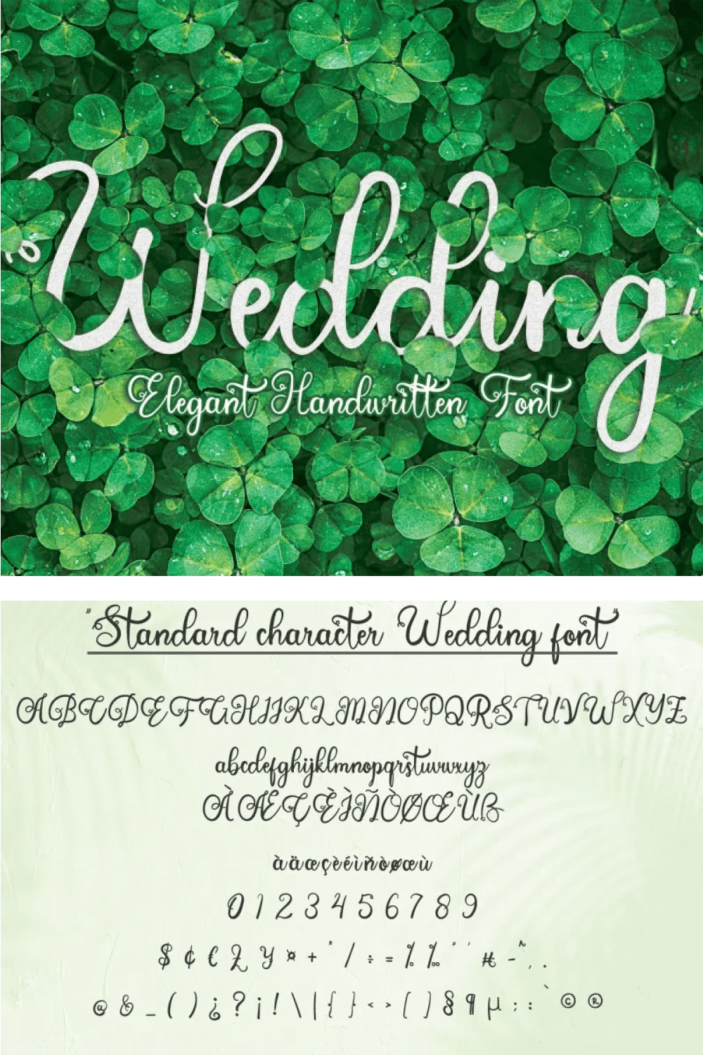 This is an exquisite, lovely and flowing handwritten font.