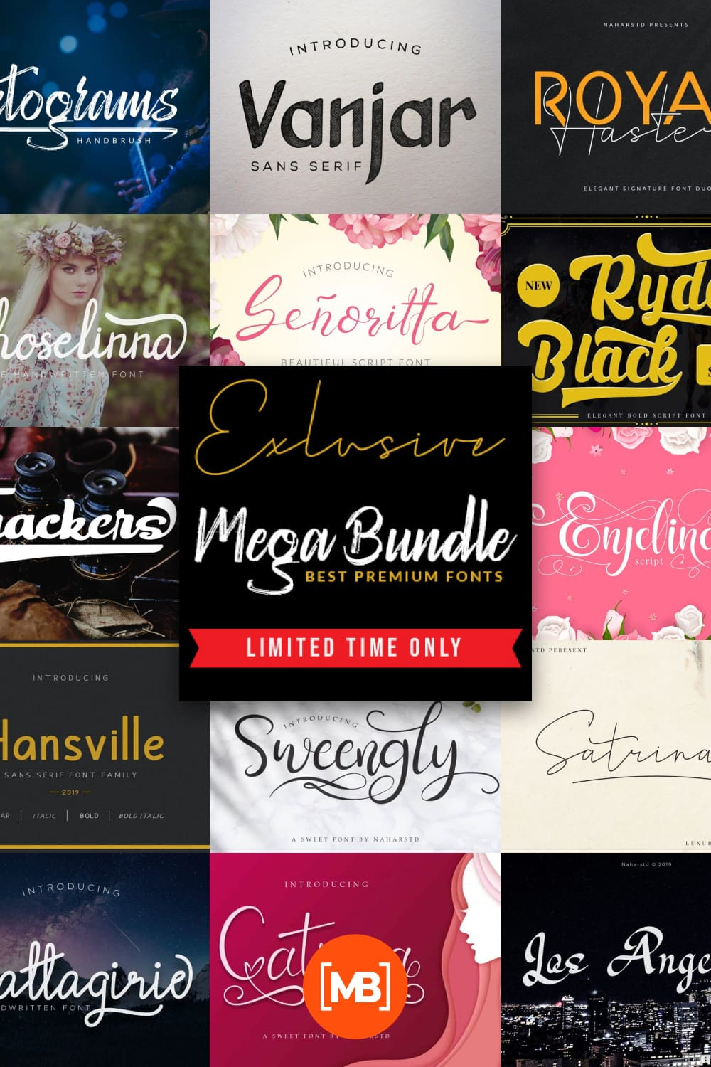 A large collection of fonts in which you can choose a font for any purpose.
