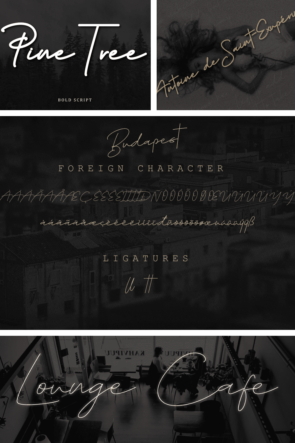 A flexible font with a thin and bold effect.