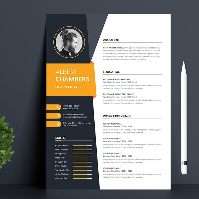 Modern Resume Template Preview.