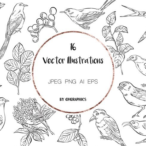 Hand Drawn Birds, Leaves and Berries in Black and White main cover.