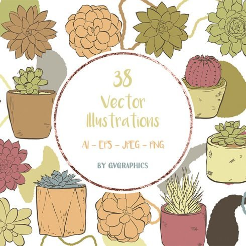 Hand Drawn Succulents, Cacti and Doodles Vector Illustrations main cover.