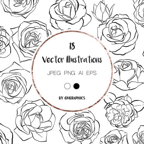 Hand Drawn Roses, Floral Illustrations in Black and White main cover.
