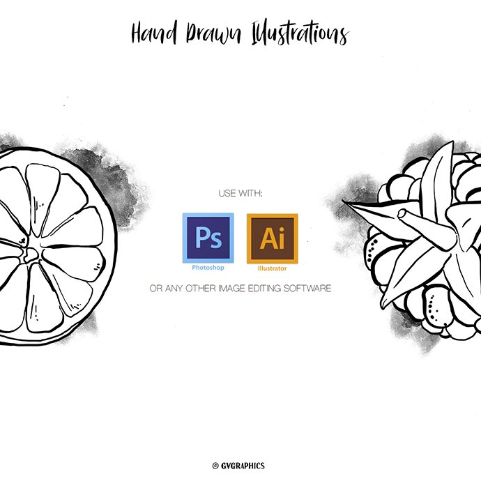 Hand Drawn Fruits Illustrations in Black and White cover image.