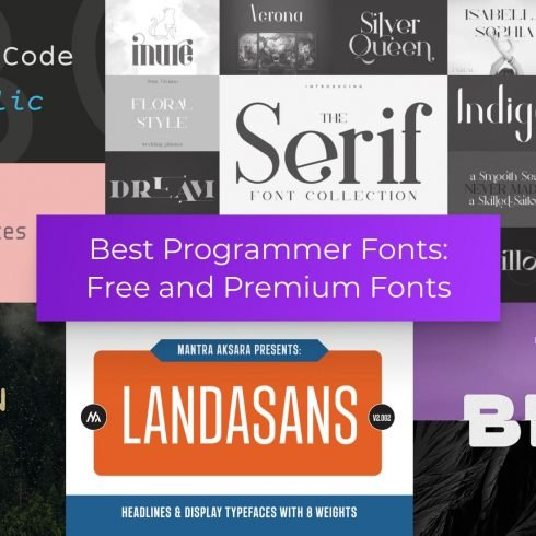 Programmer Fonts Example.